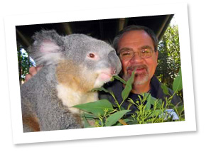 Tom and Ken the Koala